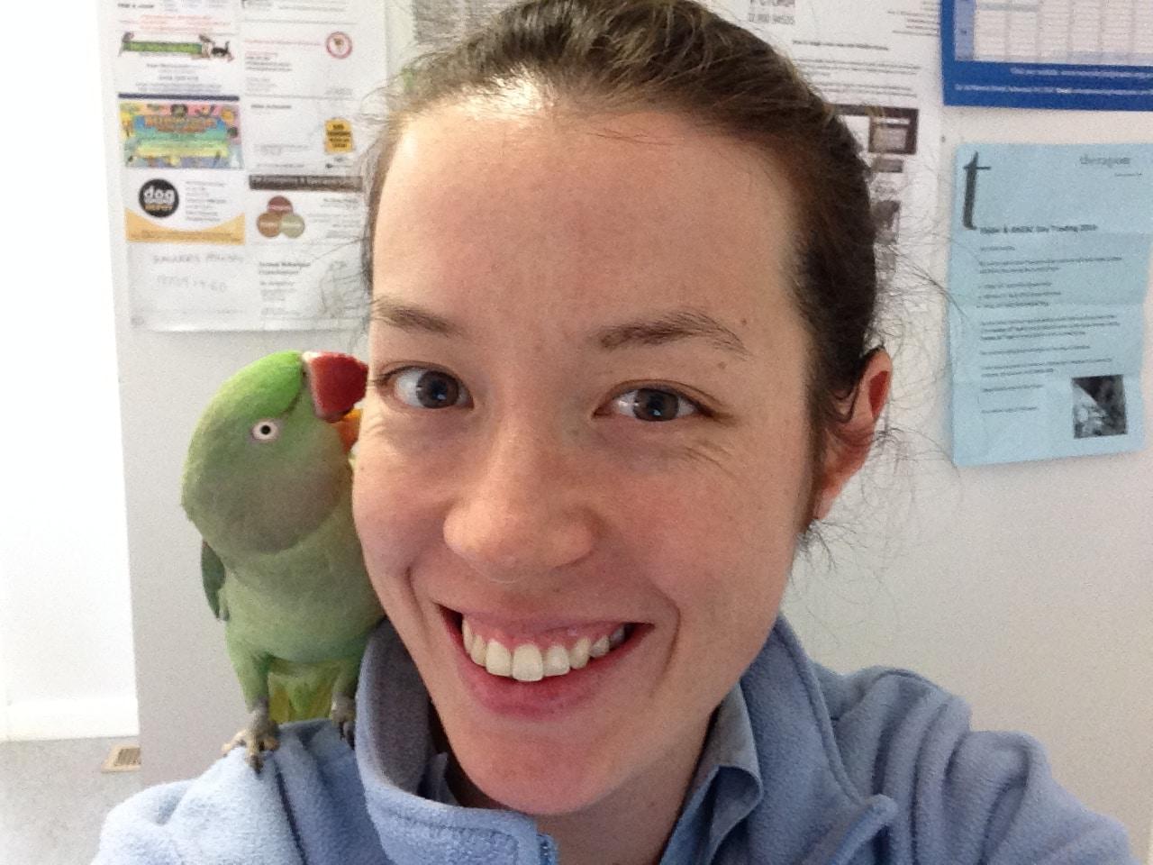 Birdvetmelbourne - Avian vets